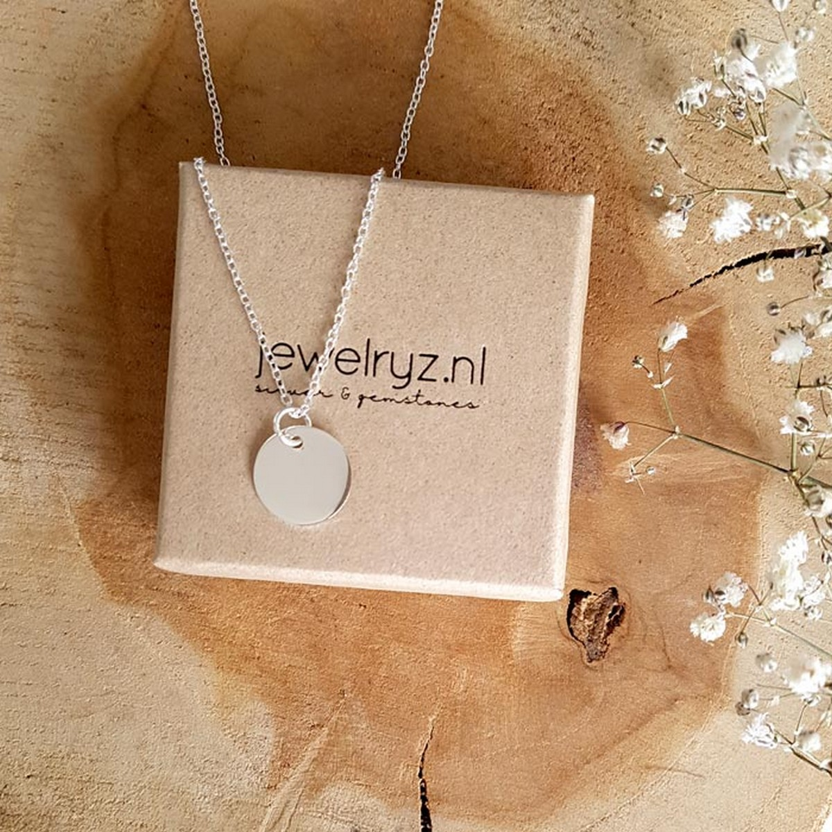 Coin Big | Ketting 925 zilver