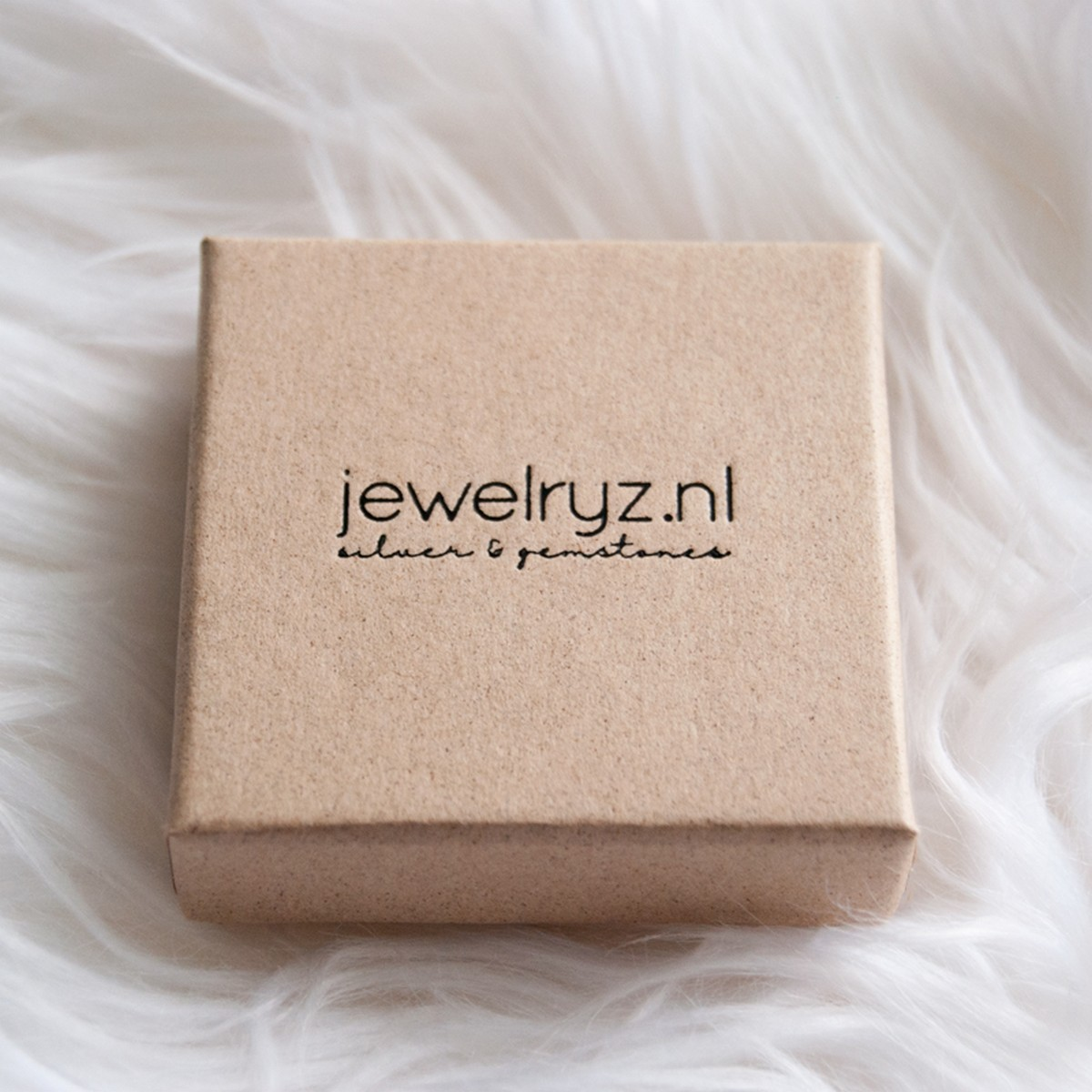 Coins | Ketting 925 zilver